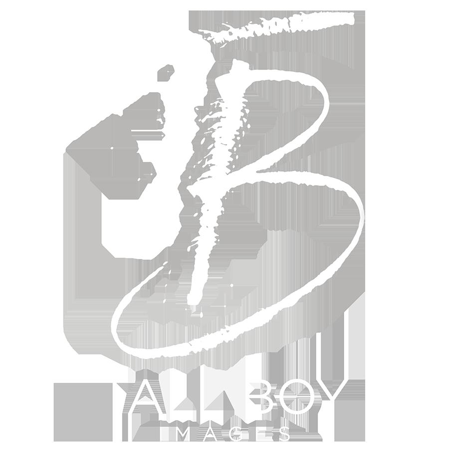 Tallboy images